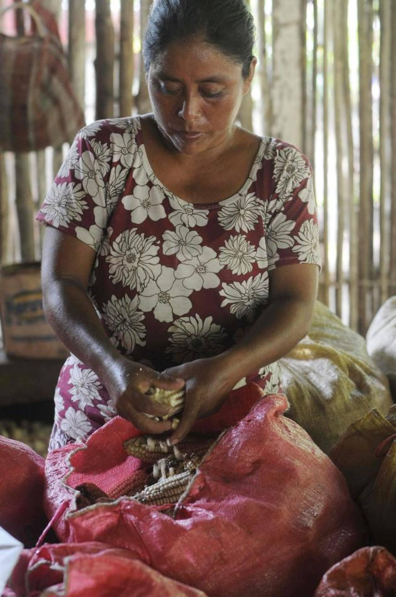En la región 1 de cada 13 personas sufren la subalimentación, según datos de la FAO. foto EDH/archivo