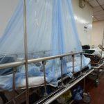 Salud reporta un alza en los casos de dengue en el país. Foto/ Archivo