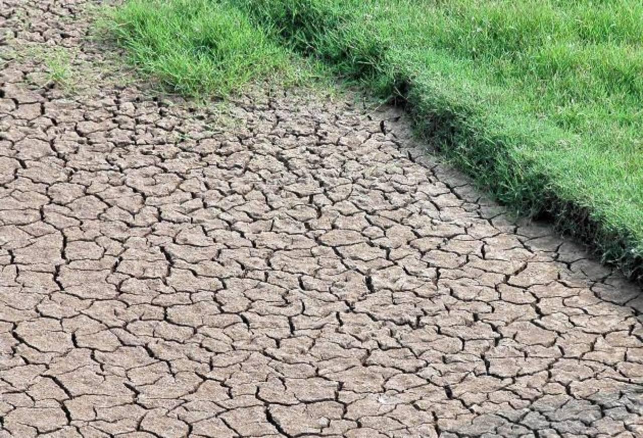 Preocupación porque el MAG no tiene plan contingencial contra 'El Niño'