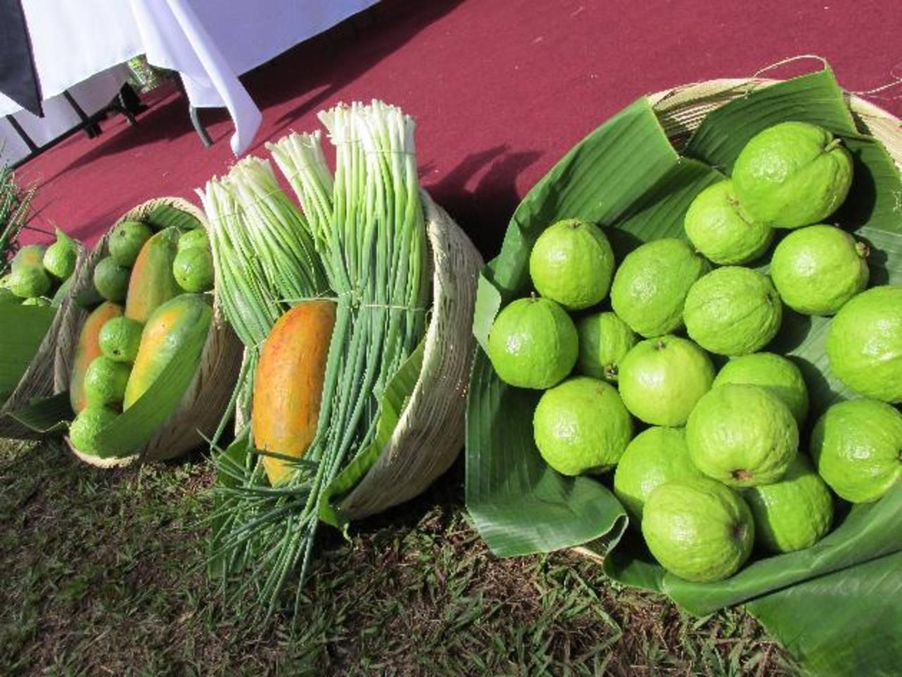 En varios municipios del Oriente del país las familias producen sus alimentos. Foto EDH /cortesía