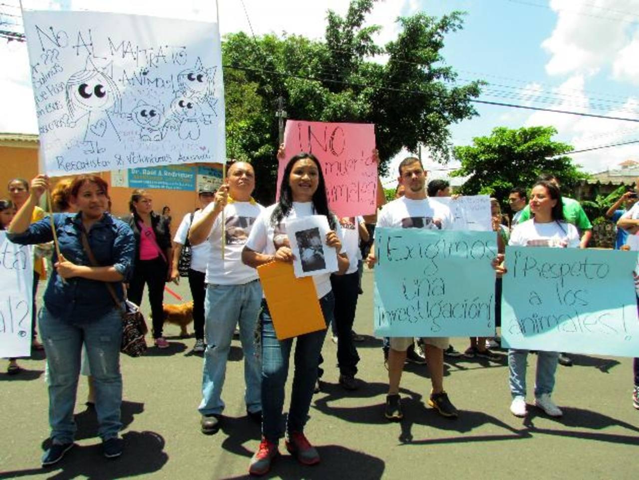 La marcha fue apoyada por la asociación protectora de animales Huellitas. Foto EDH / MAURICIO GUEVARA