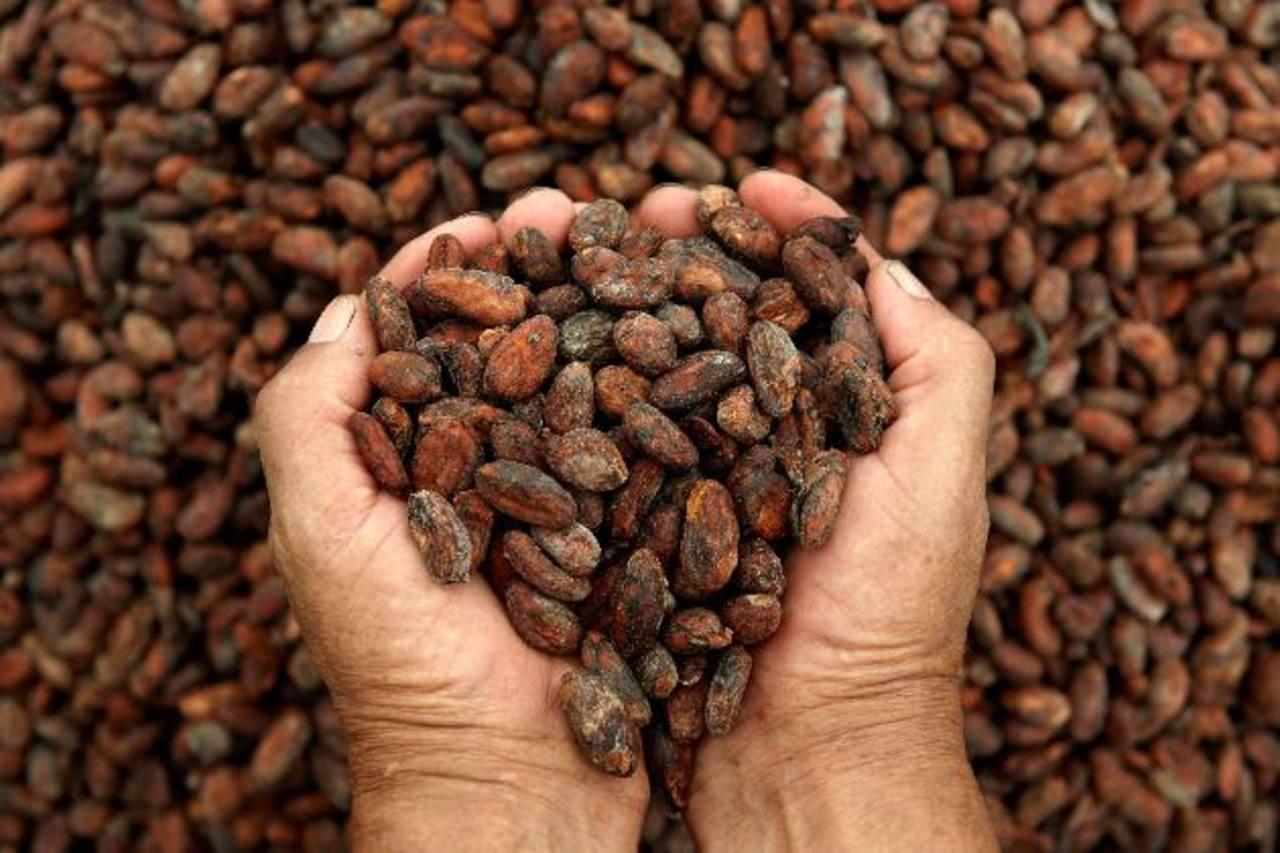 Los operadores de cacao y los fabricantes de chocolates también se han involucrado en grandes proyectos, incluyendo a la marca alemana de chocolates Ritter Sport, que tiene 2.000 hectáreas de tierra en Nicaragua.