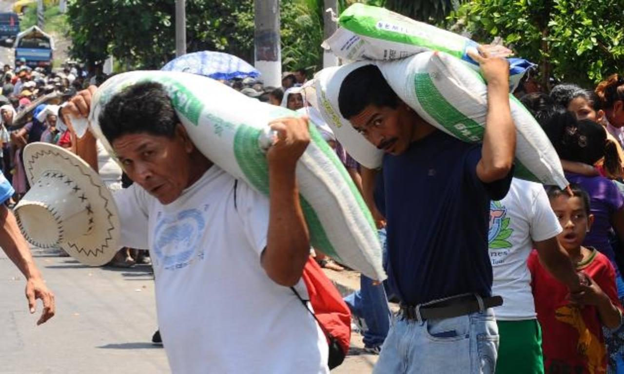 Los agricultores de Oriente inician la siembra del grano en julio, fecha en que se prevé afectará el fenómeno del Niño. foto edh / archivo