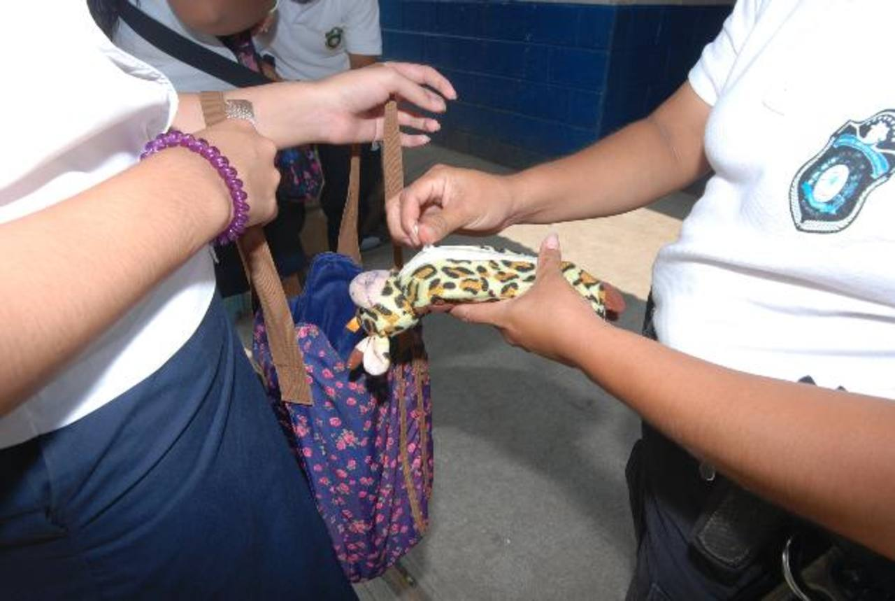 Con los registros se evita que los alumnos ingresen objetos prohibidos a las escuelas. Foto edh / Cristian DÍAZ