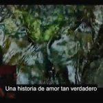 Propuesta de matrimonio se vuelve viral en YouTube