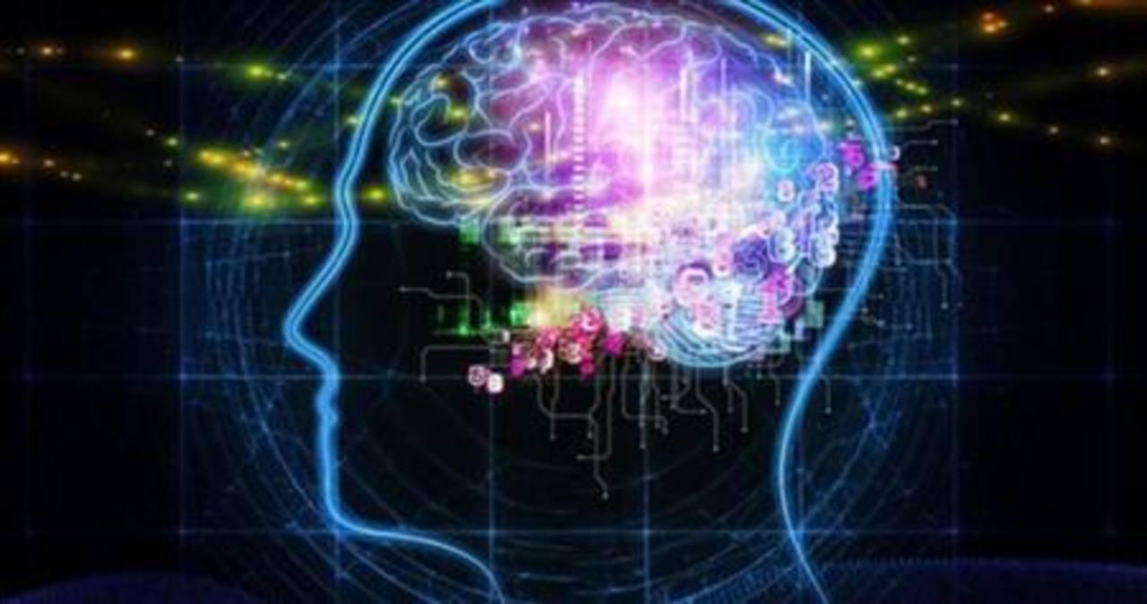 Aprender un segundo idioma mantiene joven el cerebro