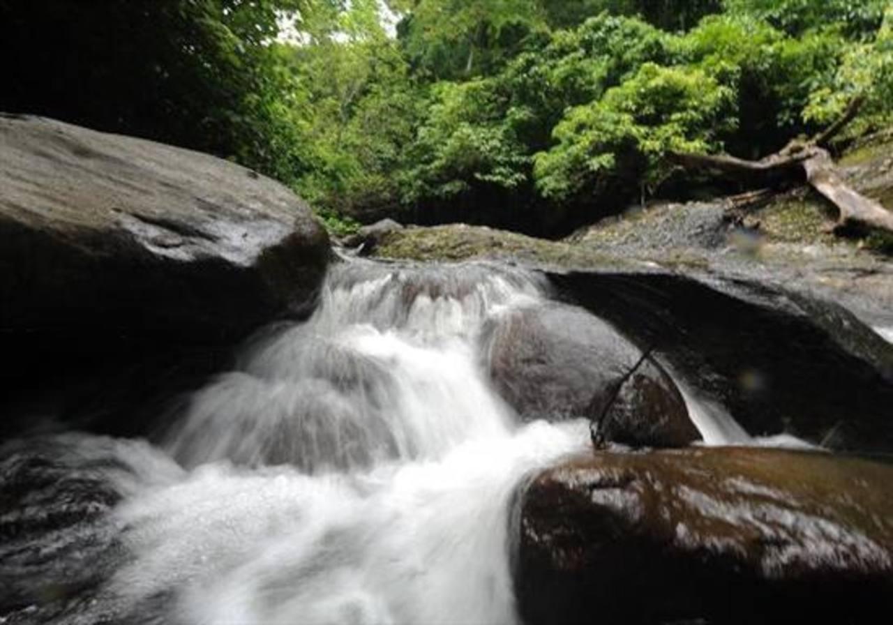 Cinco reservas naturales para visitar en El Salvador