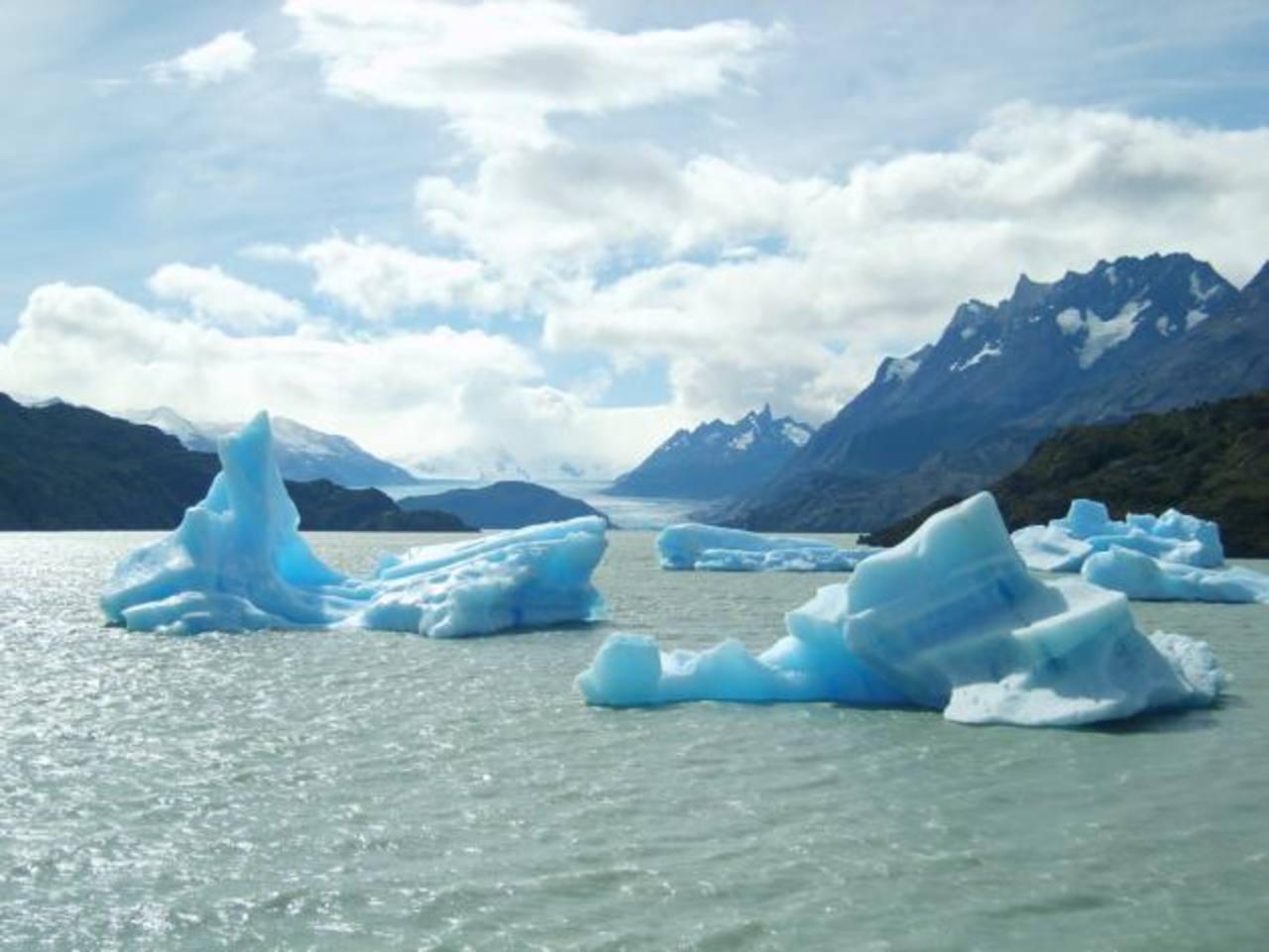 Los cambios físicos en la Antártida se cuentan entre los más extremos y la biología es muy sensible. foto edh