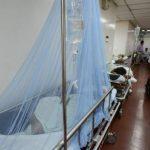 Minsal: Hay 1,300 casos de virus chikungunya en El Salvador