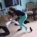 Video: León mascota ataca a joven visitante