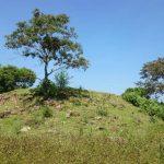 Estructura enterrada, situada al centro del lugar que está en perfecto estado, según evaluaciones. Foto EDH / Diandra Mejía