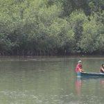 Pobladores de El Guayabo, en la zona de Garita Palmera, buscan proteger la biodiversidad de sus manglares.