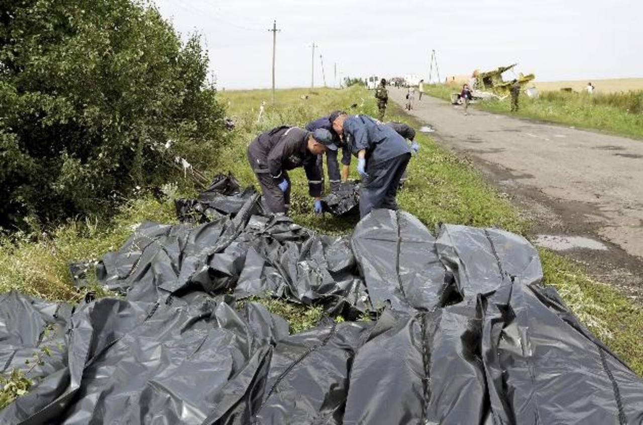 Bolsas con cadáveres de los pasajeros del vuelo MH-17 eran ordenados ayer en una zona cerca de Donetsk, Ucrania. EFE