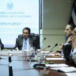 Dicha comisión especial fue creada en febrero de 2013, el objetivo era estudiar el contrato entre la Comisión Ejecutiva Hidroeléctrica del Río Lempa (CEL) con la Ente Nazionale per l'Energia eLettrica (Enel Green Power).