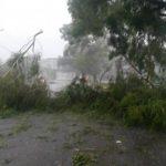 El tramo de la carretera a Santa Tecla del Trébol está bloqueado
