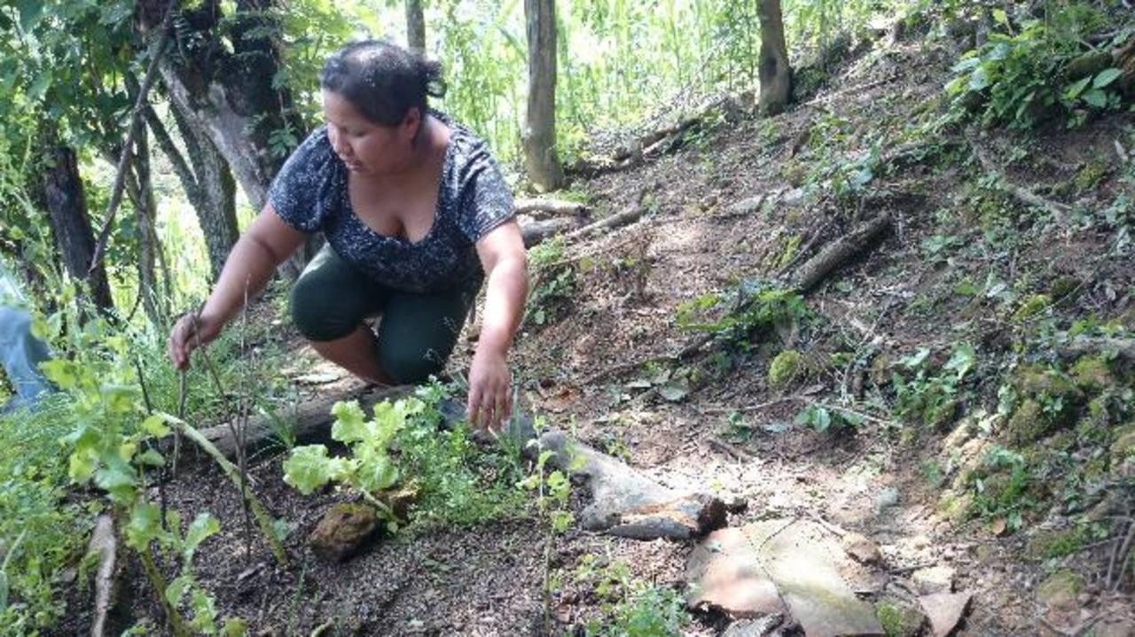 Elvida Zaldaña del cantón El Rosario, de Metapán, cultiva sus hortalizas con la ayuda de Gaia y Fiaes.