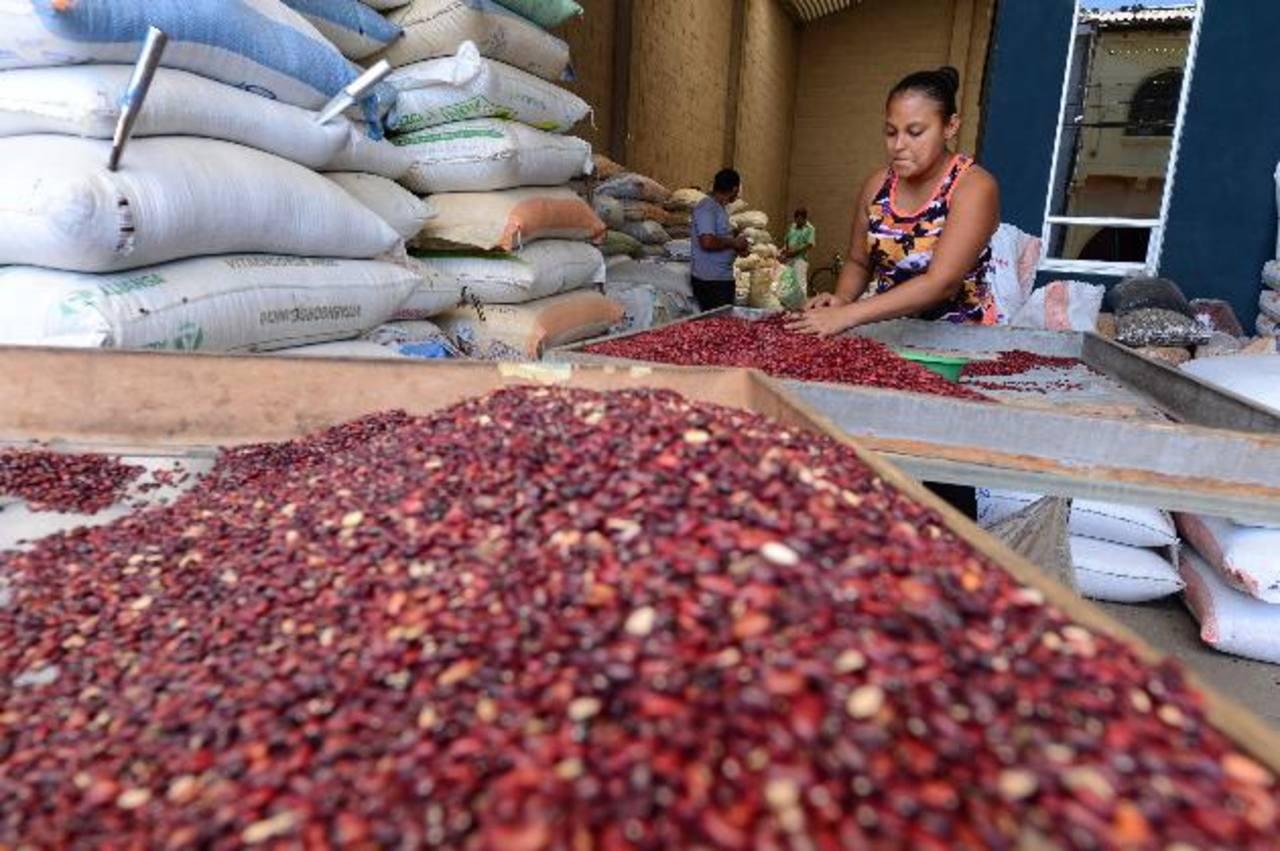 Los vendedores afirman que con las inspecciones físicas en plaza se descartan los rumores de acaparamiento del grano. Foto EDH / Jorge reyes