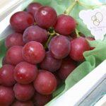 Vendido un racimo de uvas en Japón por 5,390 dólares