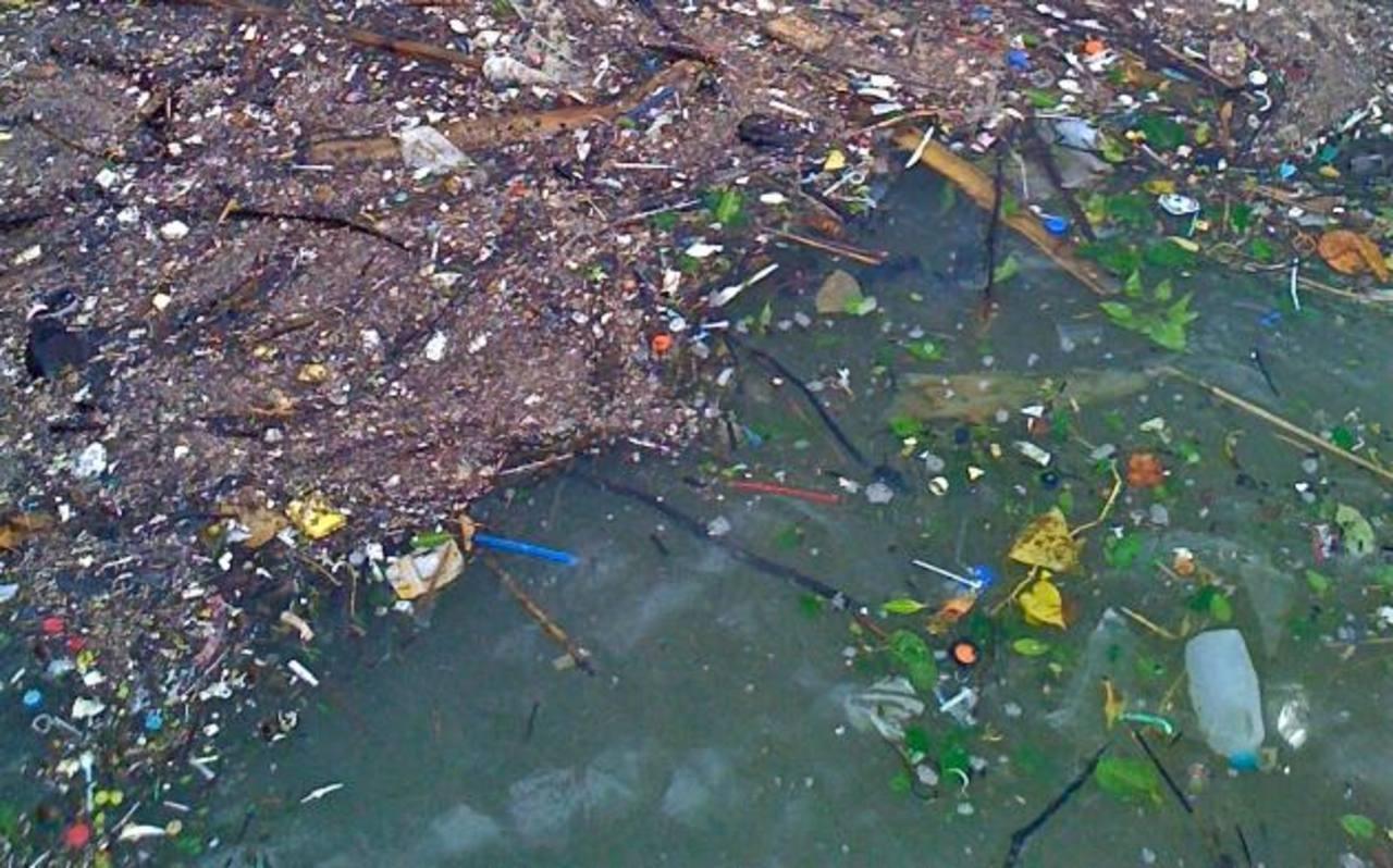Hasta 35,000 toneladas de plástico flotan en mares