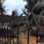 Video: Hombre a punto de morir al ser atacado por cocodrilo