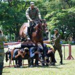 Los asistentes participaron en una de las demostraciones que realizaron los jinetes junto a sus caballos. Foto edh/cristian díaz