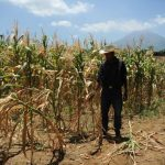 Los representantes de Campo señalan que en Oriente ya tuvo que haberse decretado alerta por la sequía.