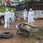 La Organización Mundial de la Salud (OMS) declaró el viernes emergencia sanitaria internacional por ébola.
