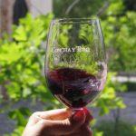 El vino chileno es uno de los más demandados en el mundo. Foto EDH/ Archivo