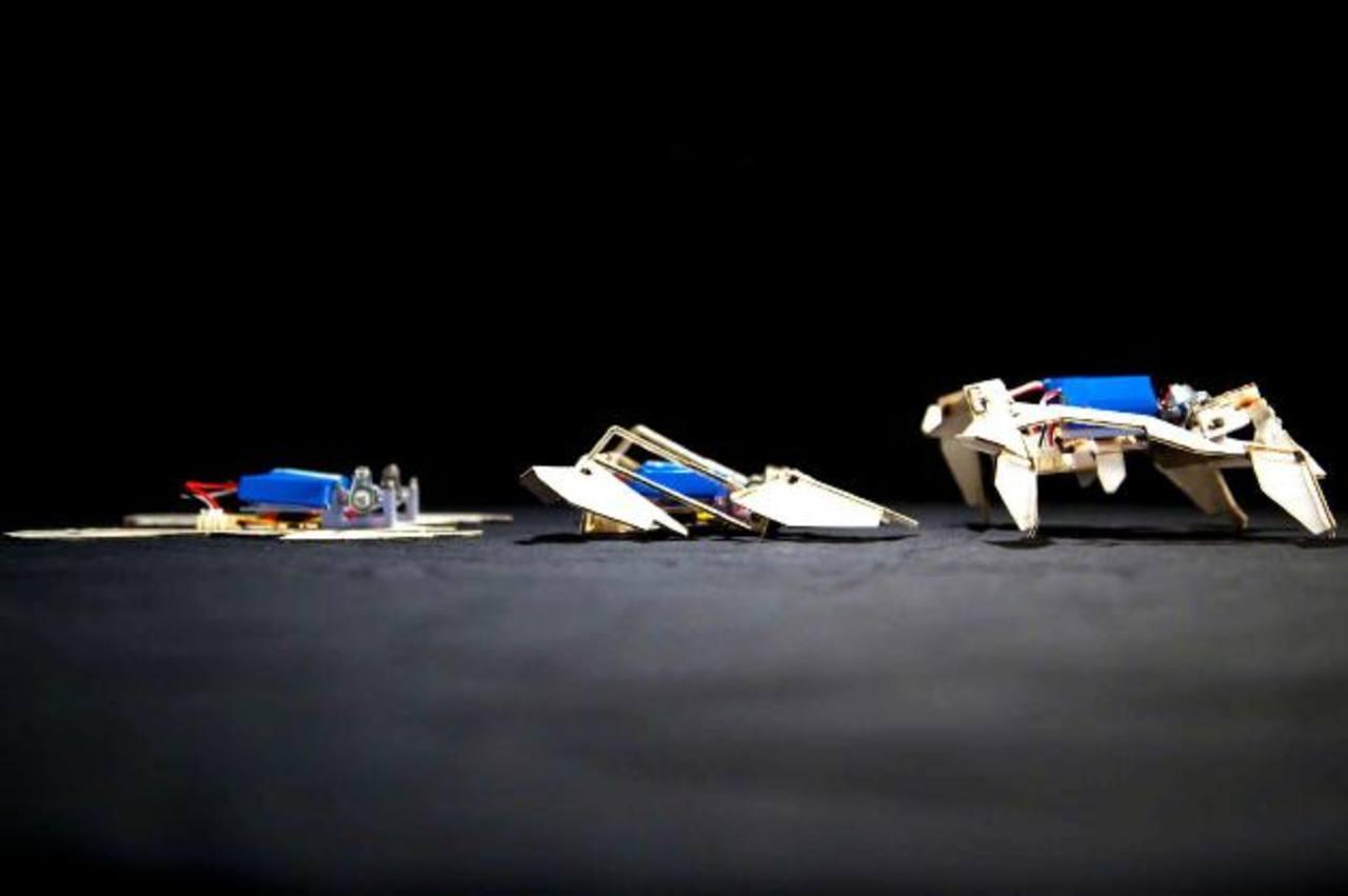 Robots baratos que se arman solos