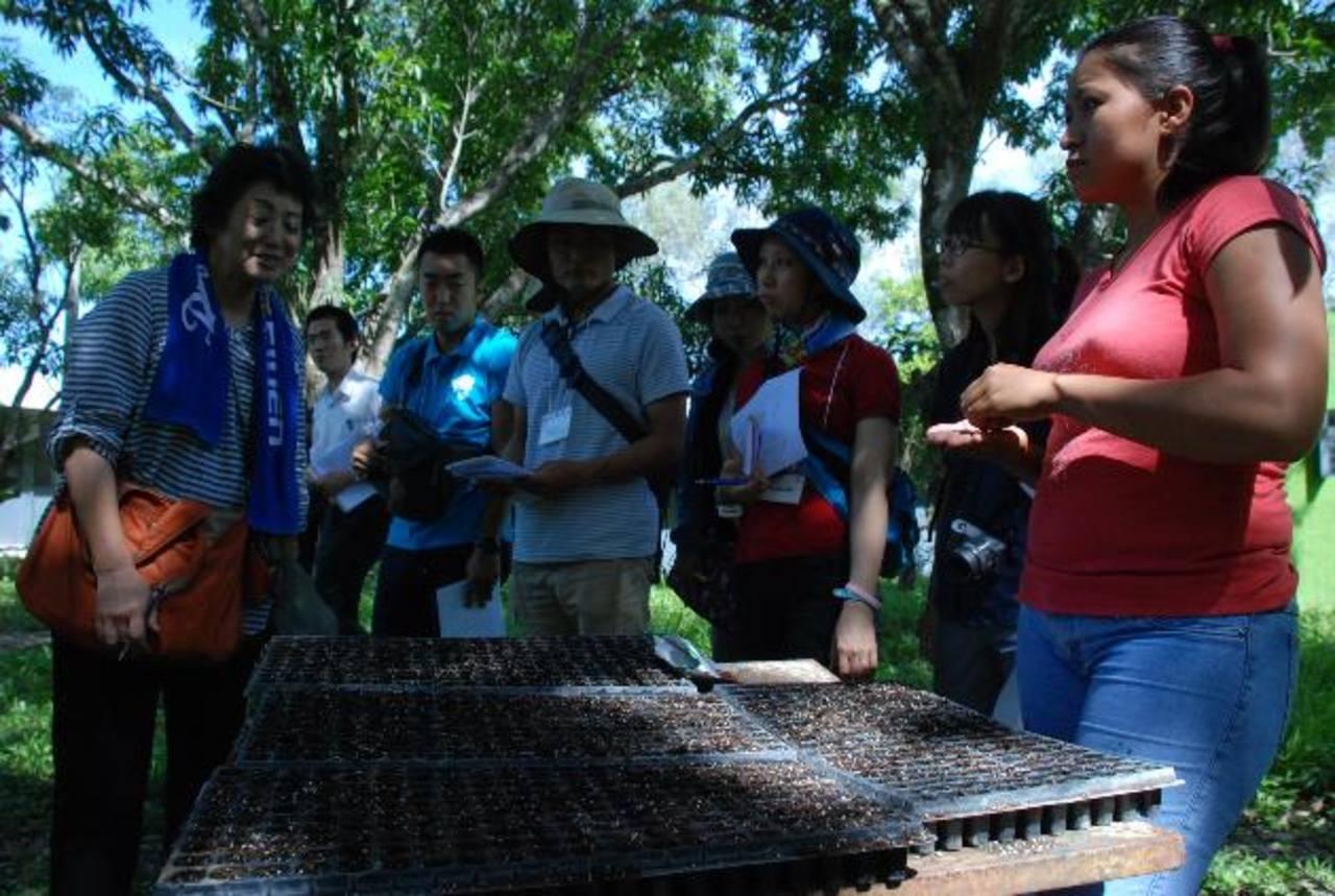 Los 10 maestros conocieron del trabajo que desarrolla el voluntario Yasuo Kato en el área de agricultura en Morazán. foto edh / lucinda quintanilla