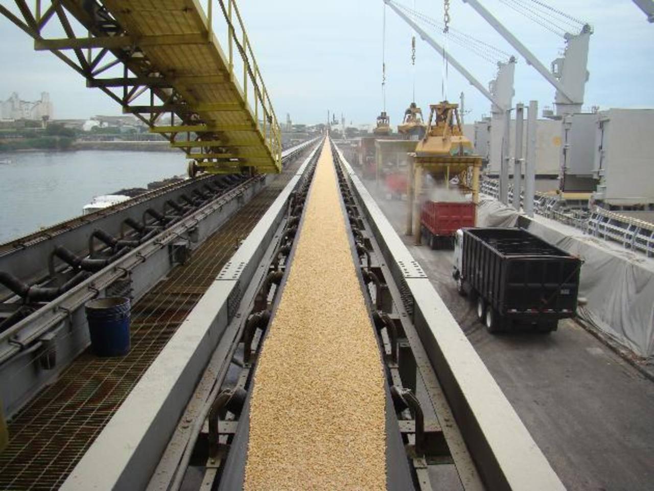 Gumarsal importó los cereales para hacer frente a la baja producción que enfrenta el país. foto/edh/Archivo