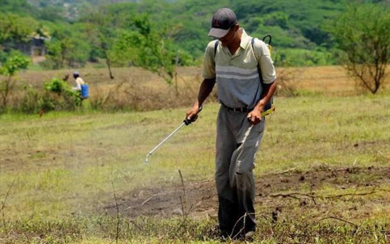 Agricultores piden tierras del estado para cultivos