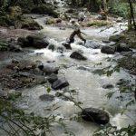 Río Paso Hondo en el Bosque Cinquera. Una reserva natural para disfrutar con la familia o amigos.