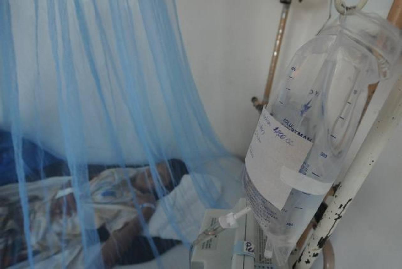 En lo que va del año, se registra un 43 por ciento más de ingresos por dengue, con relación al 2013. Foto EDH / archivo.