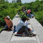 """México vigilará con imágenes satelitales tren """"La Bestia"""" usado por emigrantes"""