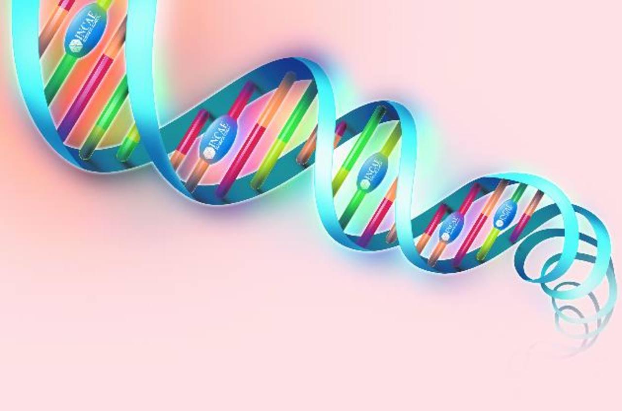 Incae tiene docentes con ADN de prestigio mundial