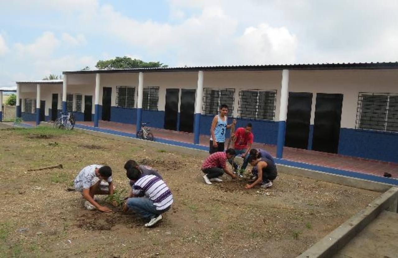 Los alumnos se han dedicado a sembrar árboles en la escuela. Foto EDH/ roberto diaz zambrano