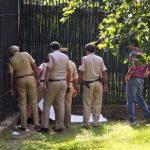 VIDEO: Hombre muere al invadir refugio de un tigre en India
