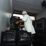 Altos costos de producción y delincuencia obstáculos para exportadores, según encuesta