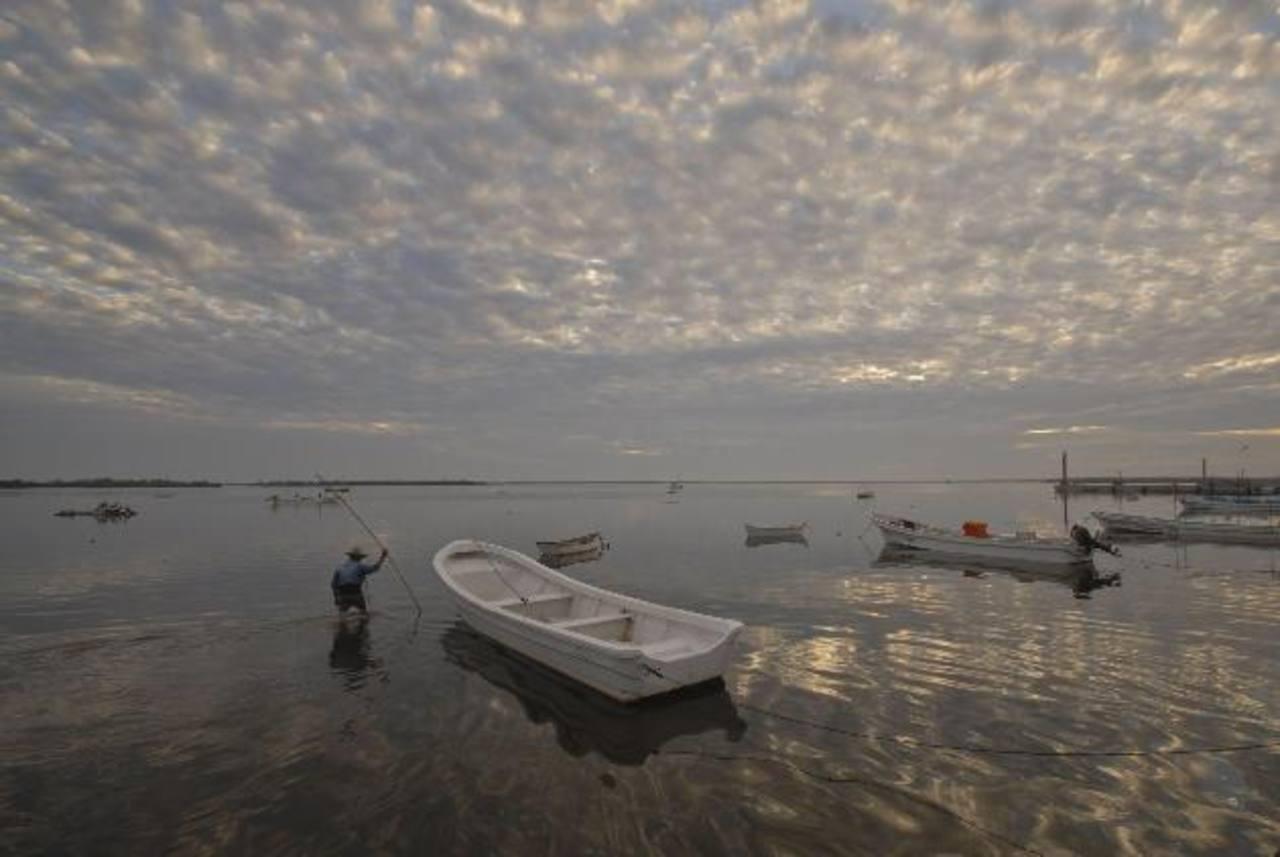 Aumento de la temperatura ambiental costaría a América Latina 2.5% del PIB