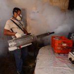 Minsal reporta más de 70 mil casos sospechosos de dengue y chikunguña