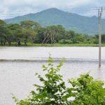 Los terrenos en la zona de los cantones El Brazo y La Canoa están inundados. Foto EDH / Carlos SegoviaElectrodomésticos, muebles, ropa y zapatos resultaron con daños irreparables en al menos 10 viviendas, en diferentes puntos del municipio.