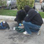 La Policía Antinarcóticos localizó tres paquetes de marihuana y dinero en efectivo al interior de un vehículo.