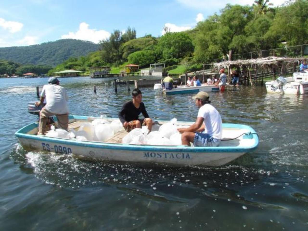 En diferentes embarcaciones fueron trasladadas las bolsas con los alevines. foto edh / CORTESÍA