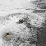 Un hombre saltó al agua para rescatar a una mujer, quien fue arrastrada por fuertes marejadas en Gopalpur.