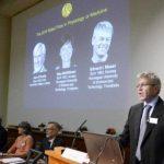 El Nobel de Medicina premia el estudio del cerebro