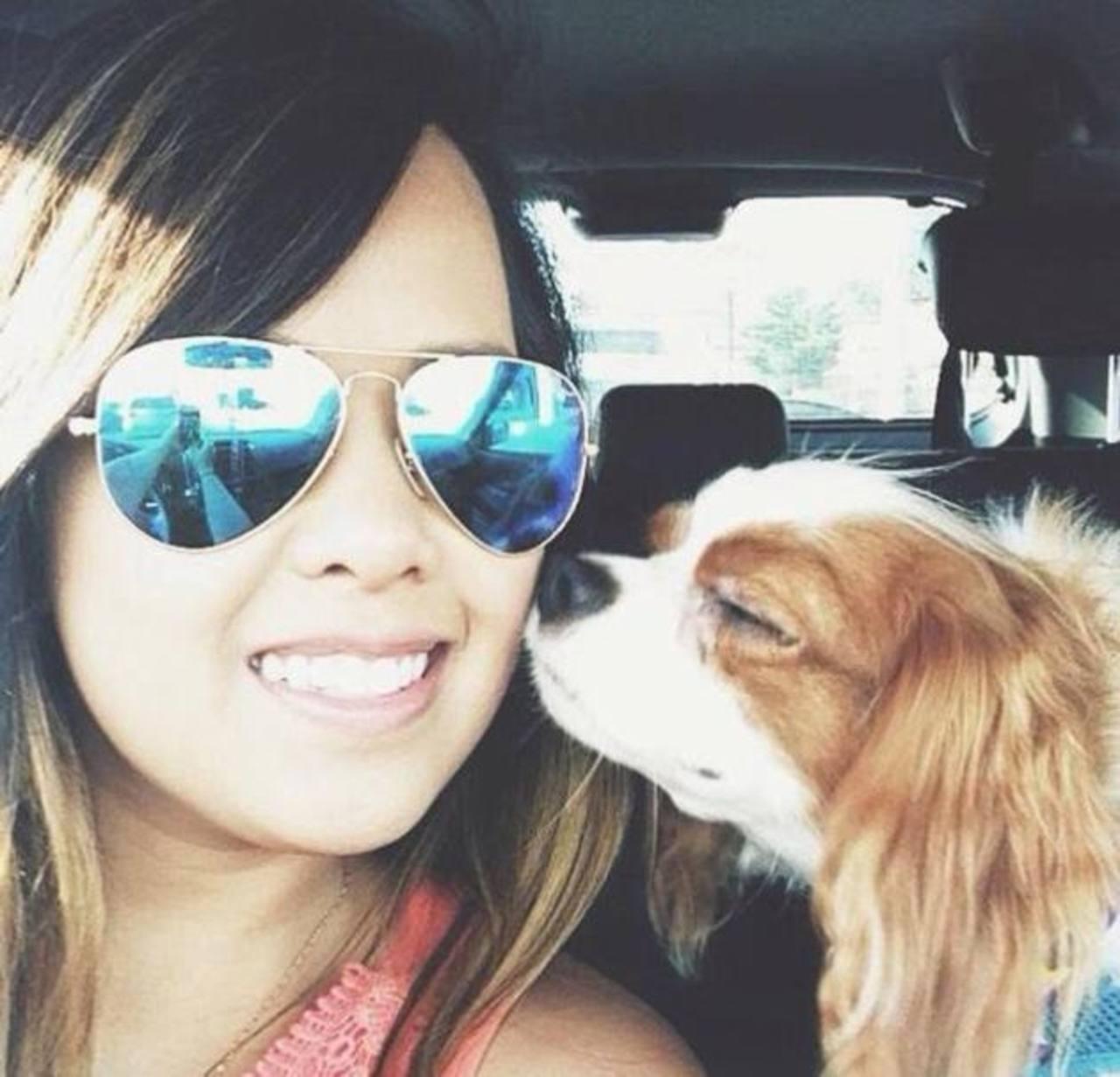 El perro de la mujer contagiada de ébola en EE.UU. no será sacrificado