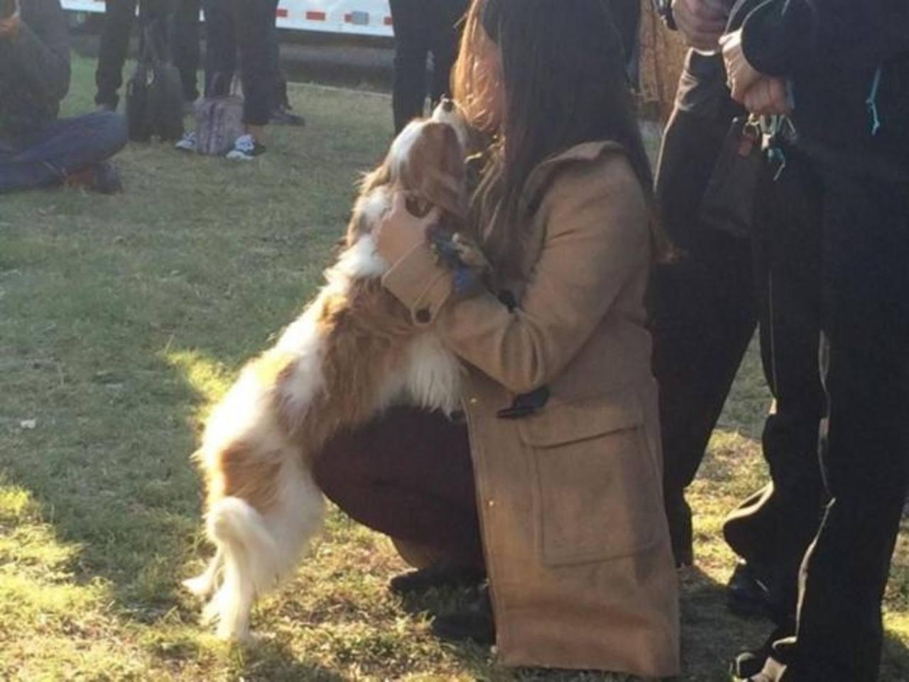 Enfermera estadounidense que tuvo ébola se reúne con su perro