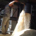 Con el Acuerdo de Asociación entre la región y la UE las condiciones de acceso a la oferta exportable de Centroamérica se mejoraron. foto edh/Archivo