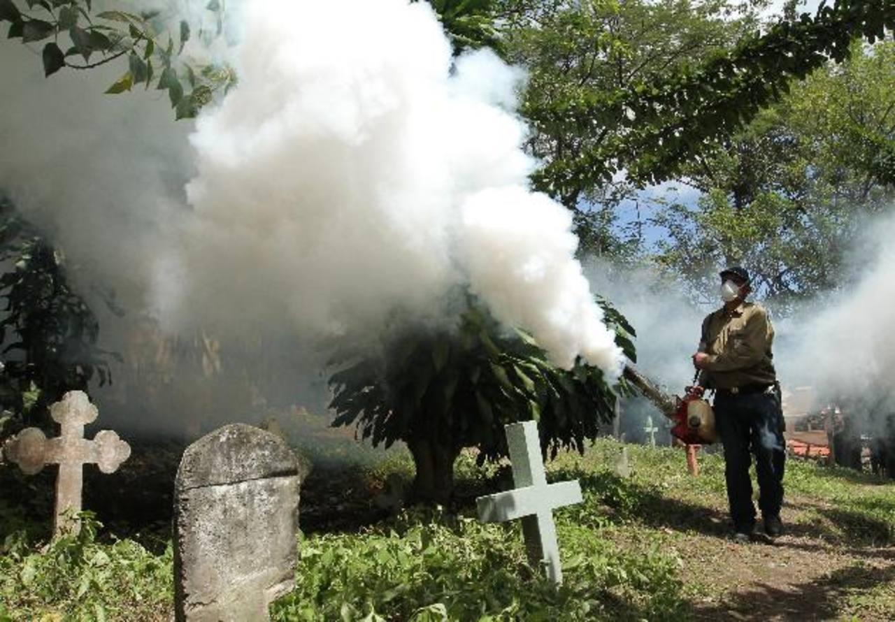 Los camposantos municipales de la capital ya se encuentran fumigados, por lo que se pide a los asistentes de abstenerse de llevar floreros con agua. Foto EDH / Archivo